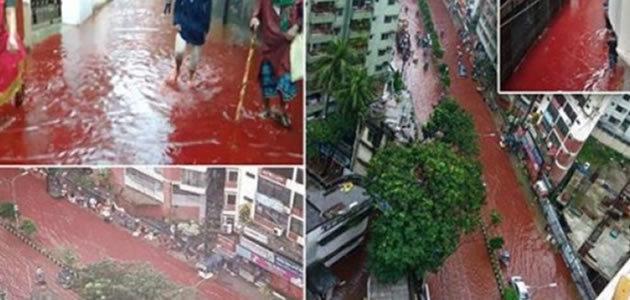 Ritual Islâmico transforma ruas em rios de sangue