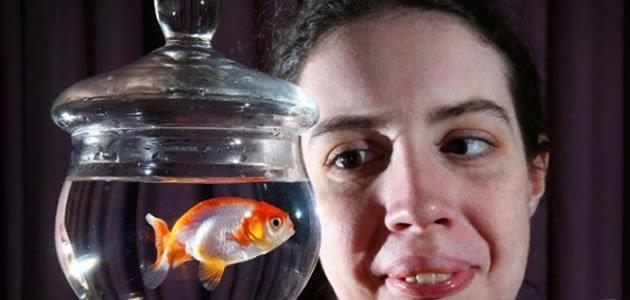 Australiana paga R$ 1,2 mil para salvar peixinho engasgado