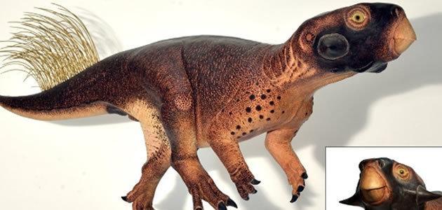 Esqueleto em 3D revela como os dinossauros eram de verdade