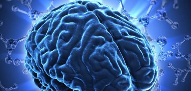 7 coisas que o nosso cérebro faz sem percebermos