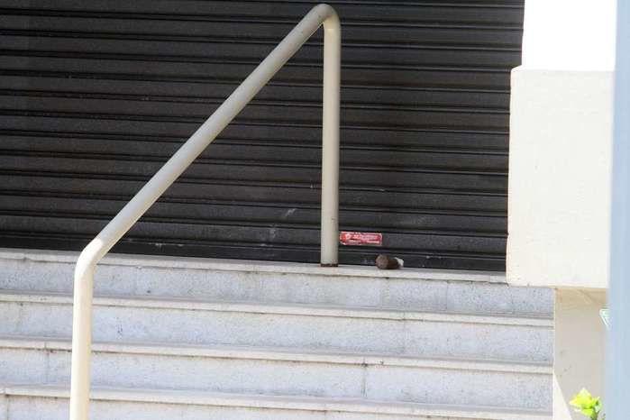 Granada foi encontrada em uma das entradas do shopping  (Crédito: Futura Press)