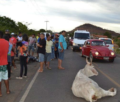 Miguel Soares de Aquino Neto colidiu contra uma vaca (Crédito: GrandePicos)