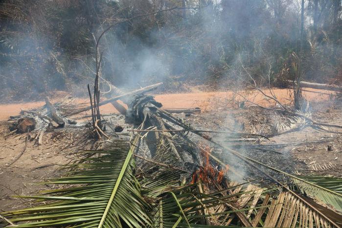 Casas foram incendiadas