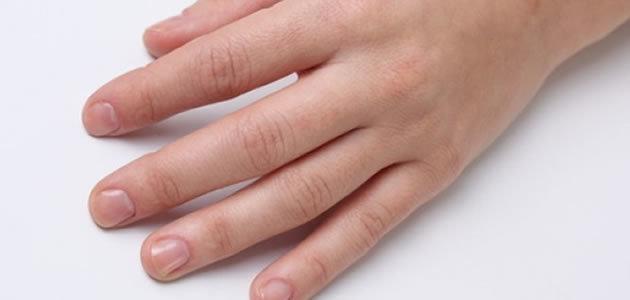 Tamanho dos dedos pode definir como vai ser a sua vida sexual