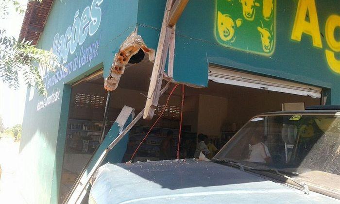Carro invadiu loja de rações (Crédito: Campo Maior em Foco)