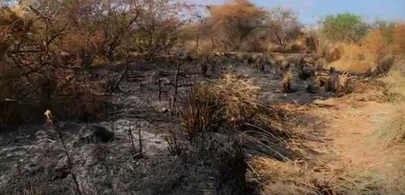 Local onde as joveens foram encontradas foi incendiado (Crédito: Reprodução)