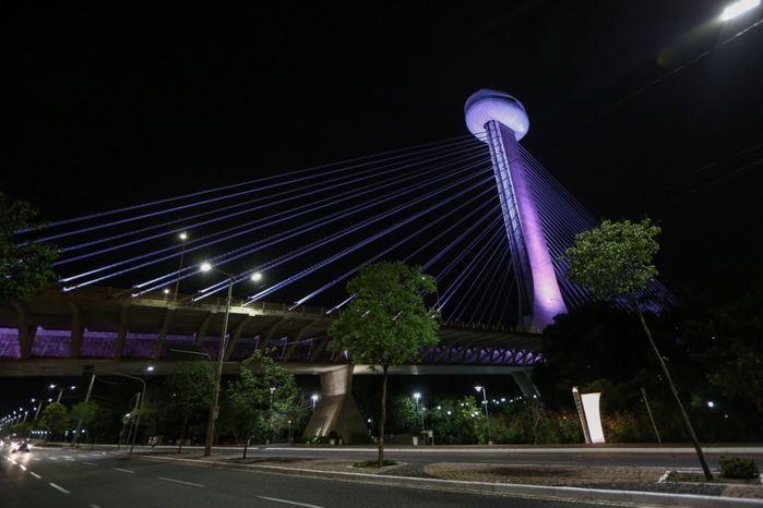 Ponte Estaiada (Crédito: Wilson Filho)