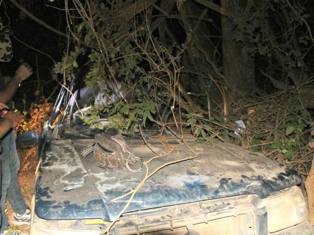 Carro da família saiu da pista, capotou e bateu em árvore (Crédito: Reprodução)