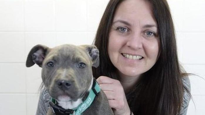 A cachorra foi salva após passar por cirurgia
