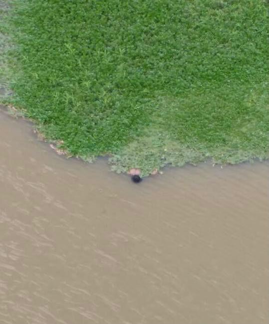 Corpo encontrado no rio Poti (Crédito: Reprodução)