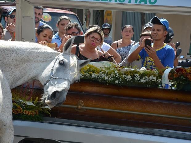 Cavalo comove família ao 'se despedir' do dono na Paraíba
