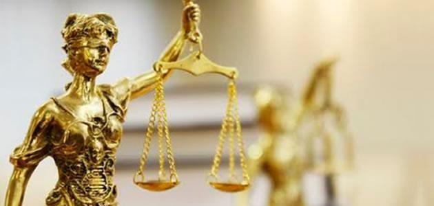5 dicas para deixar seu escritório de advocacia organizado