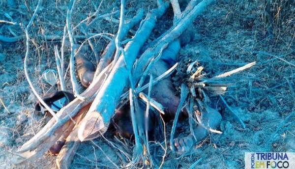 Corpo foi encontrado embaixo de galhos (Crédito: Tribuna em Foco)