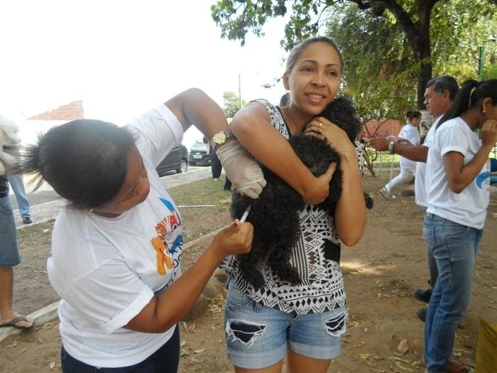Ao todo, foram imunizados 105.714 animais (Crédito: Ascom)