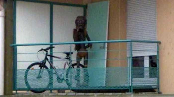 Imagem de criatura bizarra foi tirada da internet (Crédito: Google maps)