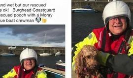Cachorro é resgato sozinho em alto mar após tempestade