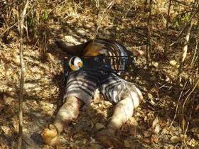 Corpo de homem é encontrado na zona rural de José de Freitas