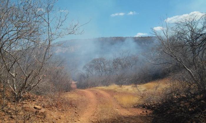 Incêndio destrói vegetação em Santana do Piauí (Crédito: João Rodrigues)