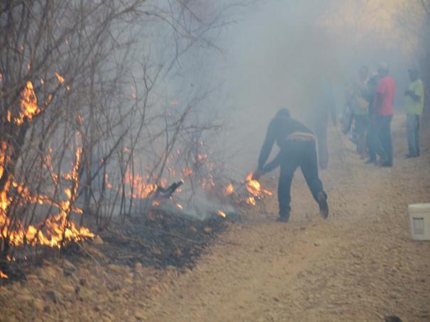 Fogo destroi grande área em Colônia do Piauí (Crédito: José Fernando)
