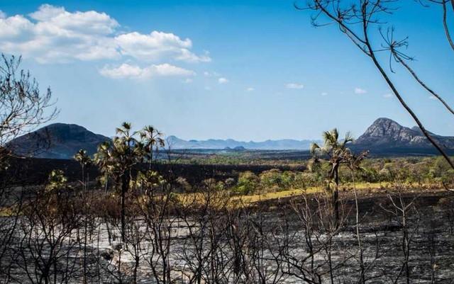Parque Nacional da Chapada dos Veadeiros tem vegetação destruída devido incêndio (Crédito: Davi Boarato/BBC Brasil)