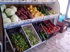 Blessing: Frutas, verduras e água mineral de qualidade em União