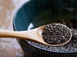 Sementinha conhecida por Chia, é recomendada por nutricionistas