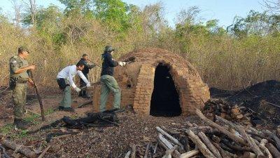 Fornos clandestinos de carvão destruídos em Regeneração (Crédito: SEMAR)