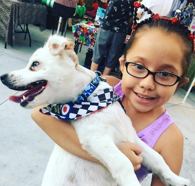 Menina surda ensina língua de sinais para seu cãozinho  (Crédito: Reprodução)