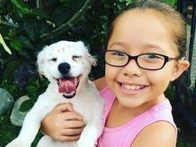 Menina surda ensina língua de sinais para seu cãozinho