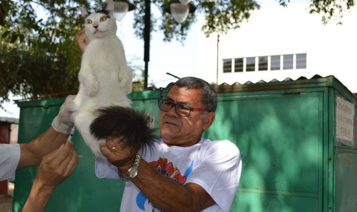 Mais de 120 mil animais domésticos foram vacinados contra a raiva em Teresina (Crédito: Divulgação)