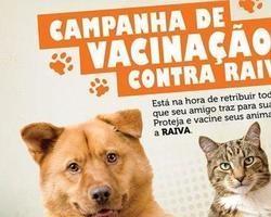 """Dia """"D"""" da campanha de vacinação antirrábica acontece neste sábado"""