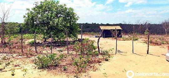 Agricultores de Parnaíba são brutalmente assassinados em Araioses