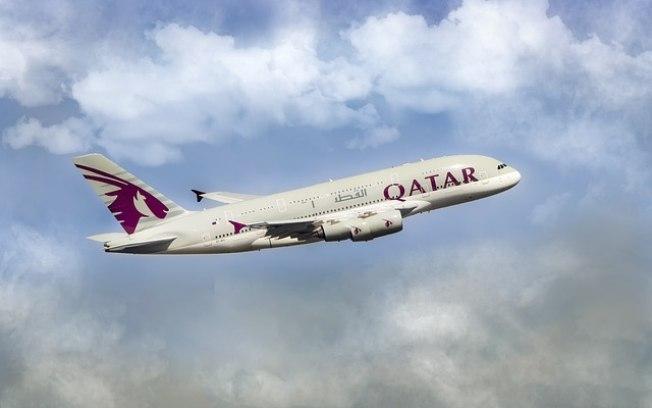 Avião foi obrigado a fazer pouso de emergência (Crédito: Creative Commons/Pixabay  )