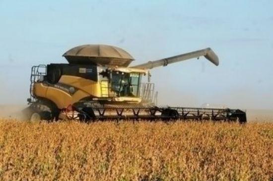 Colheita de soja em Uruçuí (Crédito: Reprodução)