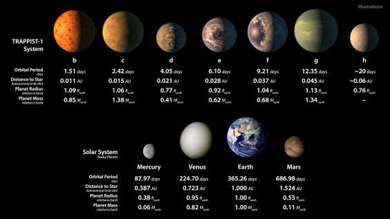 Planetas: três deles estão na zona habitável (Crédito: Reprodução)