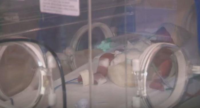 Bebês nasceram nesta segunda-feira