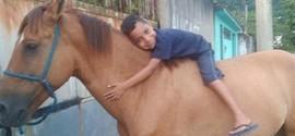 Ladrão devolve cavalo ao saber que dono não podia se emocionar