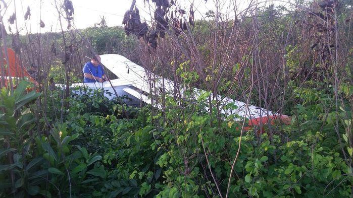 Avião de pequeno porte faz pouso de emergência na z. Rural de THE (Crédito: Reprodução)