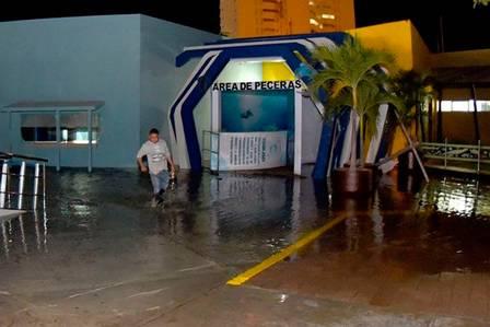 Tanque gigante de aquário se rompe no México