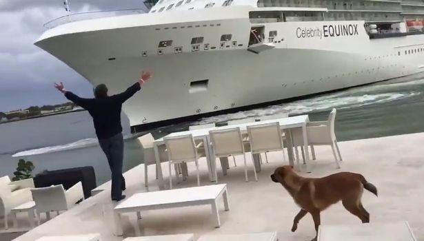 Homem se desespera ao ver navio de cruzeiro no seu quintal