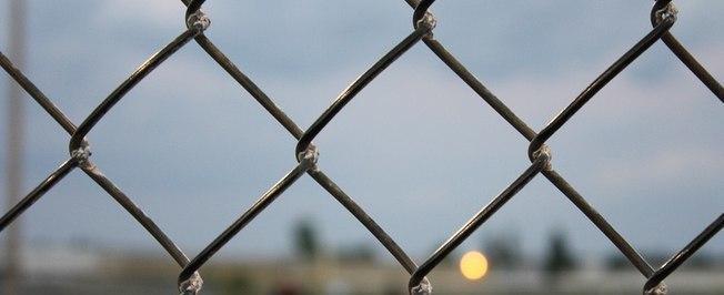 Homem é preso após beijar e transar com uma tela de arame