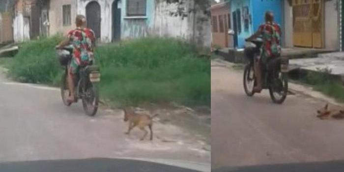 Motociclista é detida após arrastar filhote de cadela na rua no PA