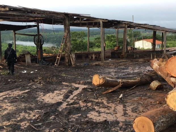 Operação Maravalha no Maranhão (Crédito: Divulgação)