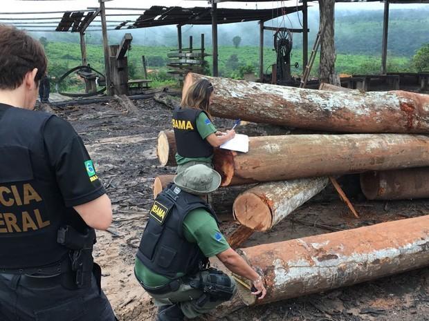 Polícia Federal deflagra Operação Maravalha no Maranhão (Crédito: Divulgação)
