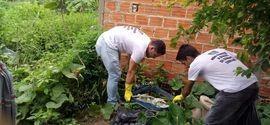 Sexta-feira de faxina contra a dengue em Palmeirais