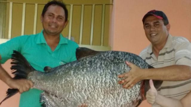 Peixe pescado na Barragem do Estreito no último sábado