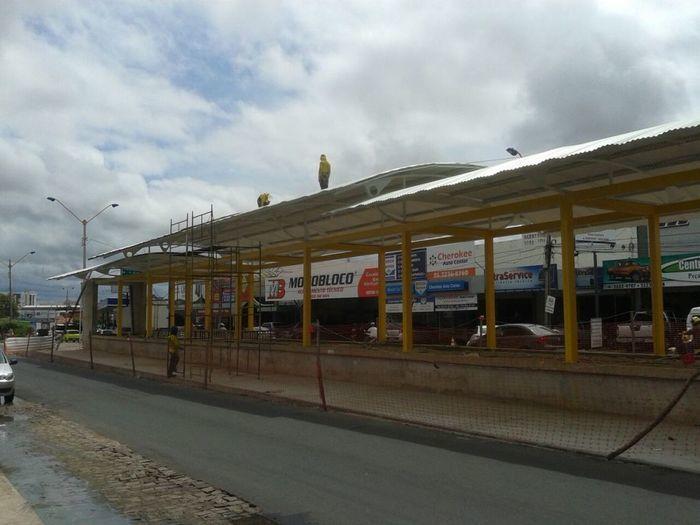 Strans instala coberturas nas estações de passageiros