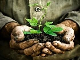 Humanidade ameaça vida na Terra