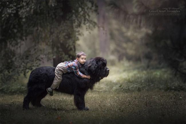 Ensaio mostra  amizade de crianças com seus cachorros gigantes