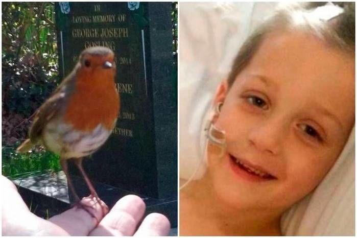 """Mãe posta vídeo com """"sinal"""" que recebeu do filho morto"""